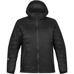 Textiel Heren Dons gevoerde jassen Stormtech Black Ice Zwart/Dolfijn