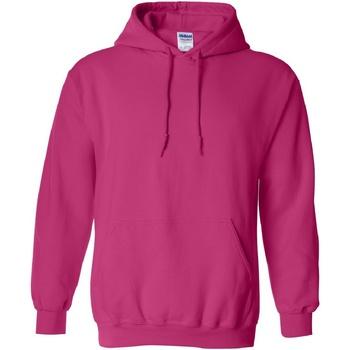 Textiel Sweaters / Sweatshirts Gildan Hooded Heliconia