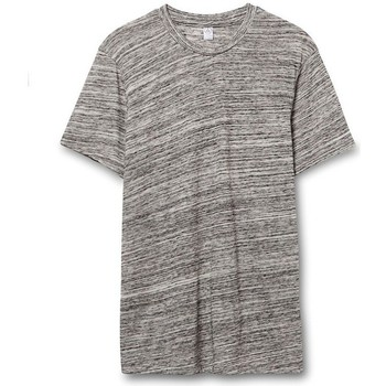Textiel Heren T-shirts korte mouwen Alternative Apparel Jersey Stedelijk Grijs