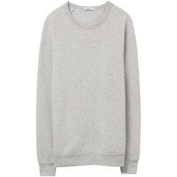 Textiel Heren Sweaters / Sweatshirts Alternative Apparel Pullover Eco Havermout