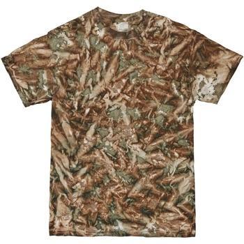 Textiel Heren T-shirts korte mouwen Colortone Camo Camo