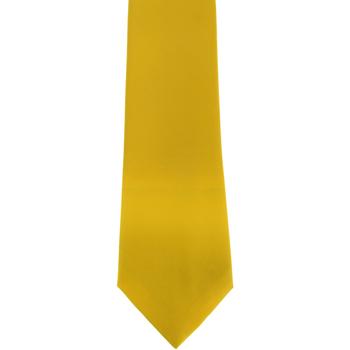Textiel Heren Krawatte und Accessoires Premier Satin Citroen