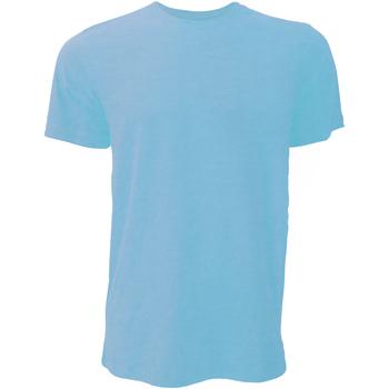 Textiel Heren T-shirts korte mouwen Bella + Canvas Jersey Heather Mint