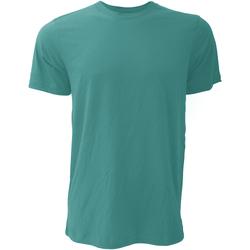 Textiel Heren T-shirts korte mouwen Bella + Canvas Jersey Diep Teal