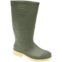 Schoenen Kinderen Regenlaarzen Dikamar  Groen (Verde/Beige)
