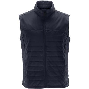 Textiel Heren Dons gevoerde jassen Stormtech Quilted Marineblauw