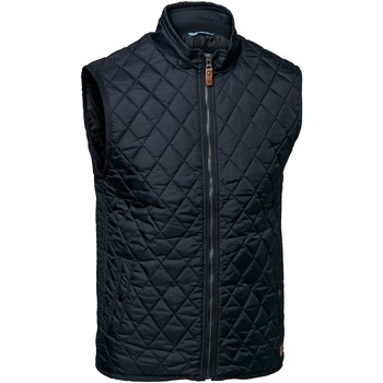 Textiel Heren Vesten / Cardigans Nimbus Camden Middernacht blauw