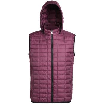 Textiel Dames Dons gevoerde jassen 2786 Hooded Mulberry