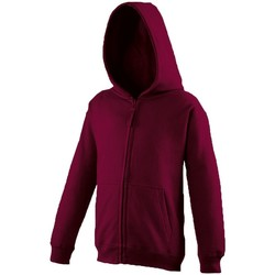 Textiel Kinderen Sweaters / Sweatshirts Awdis Hooded Bourgondië
