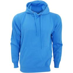 Textiel Sweaters / Sweatshirts Fdm Tagless Saffier