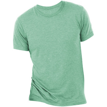 Textiel Heren T-shirts korte mouwen Bella + Canvas Triblend Zeegroene Triblend