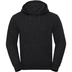 Textiel Sweaters / Sweatshirts Russell Hooded Houtskoolmelange