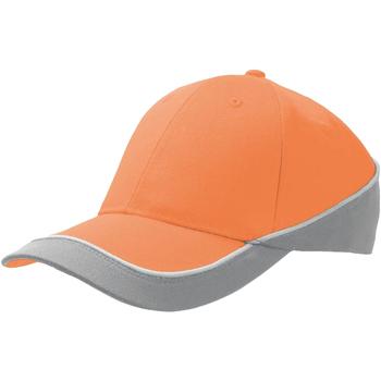 Accessoires Pet Atlantis Racing Oranje/Grijs