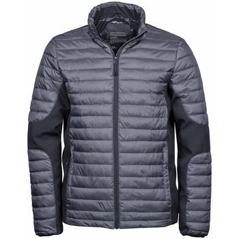 Textiel Heren Dons gevoerde jassen Tee Jays Crossover Ruimte Grijs/Zwart