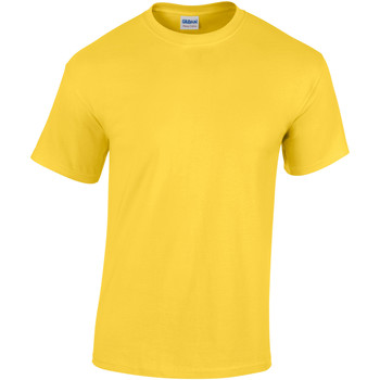 Textiel Heren T-shirts korte mouwen Gildan Heavy Daisy