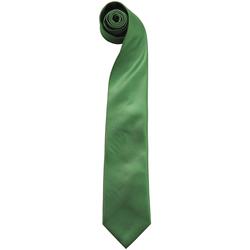 Textiel Heren Krawatte und Accessoires Premier  Smaragd