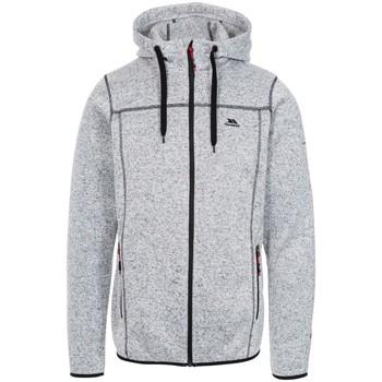 Textiel Heren Sweaters / Sweatshirts Trespass Odeno Grijs