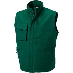 Textiel Heren Vesten / Cardigans Russell Work Fles groen