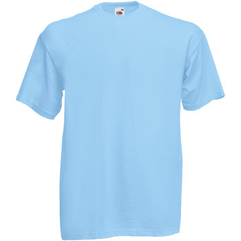 Textiel Heren T-shirts korte mouwen Fruit Of The Loom 61036 Hemel Blauw