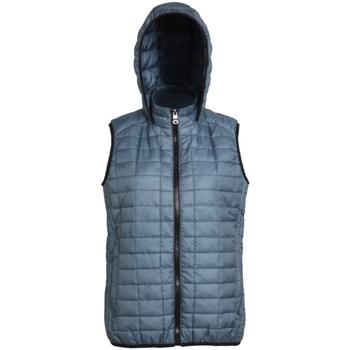 Textiel Dames Dons gevoerde jassen 2786 Hooded Staal