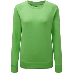 Textiel Dames Sweaters / Sweatshirts Russell Raglan Groene mergel