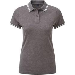 Textiel Dames Polo's korte mouwen Asquith & Fox Classics Houtskool/Wit