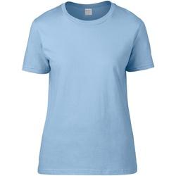 Textiel Dames T-shirts korte mouwen Gildan Premium Licht Blauw