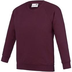 Textiel Kinderen Sweaters / Sweatshirts Awdis Academy Bourgondië