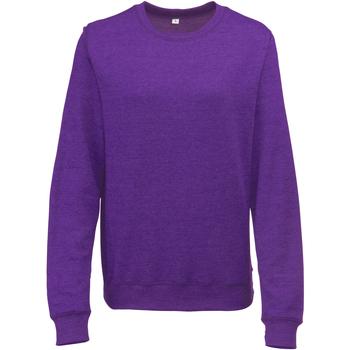 Textiel Dames Sweaters / Sweatshirts Awdis Heather Paarse heide