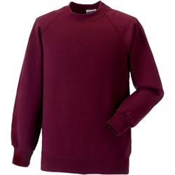 Textiel Kinderen Sweaters / Sweatshirts Jerzees Schoolgear Raglan Bourgondië