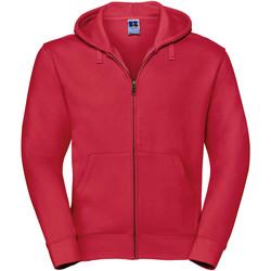 Textiel Heren Sweaters / Sweatshirts Russell Authentic Klassiek rood