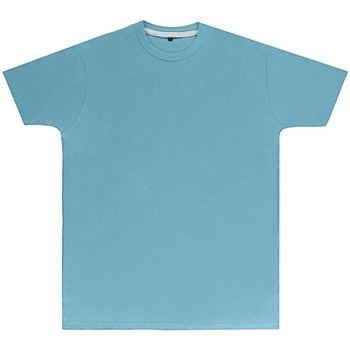 Textiel Heren T-shirts korte mouwen Sg Perfect Hemelsblauw