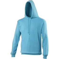 Textiel Sweaters / Sweatshirts Awdis College Hawaiiaans Blauw