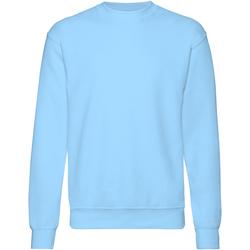 Textiel Heren Sweaters / Sweatshirts Fruit Of The Loom 62202 Hemel Blauw