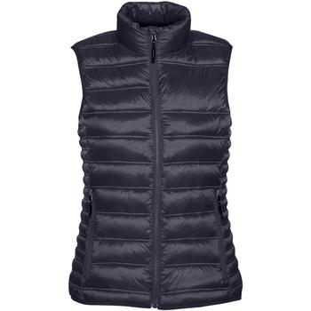 Textiel Dames Dons gevoerde jassen Stormtech Quilted Marine