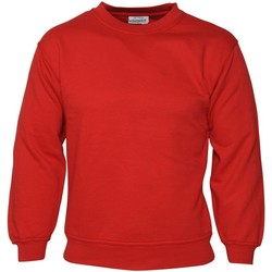 Textiel Heren Sweaters / Sweatshirts Absolute Apparel Sterling Rood