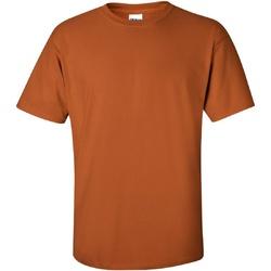 Textiel Heren T-shirts korte mouwen Gildan Ultra Texas-Sinaasappel