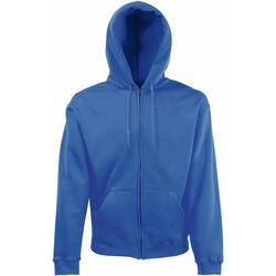 Textiel Heren Sweaters / Sweatshirts Fruit Of The Loom Premium Royaal Blauw
