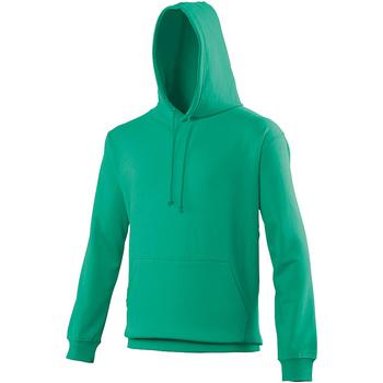 Textiel Sweaters / Sweatshirts Awdis College Voorjaarsgroen