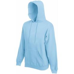 Textiel Heren Sweaters / Sweatshirts Fruit Of The Loom Hooded Hemel Blauw