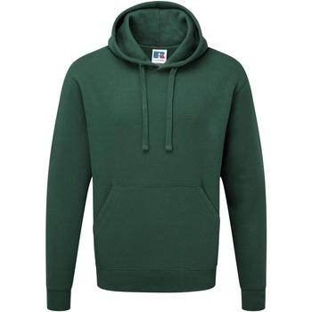 Textiel Heren Sweaters / Sweatshirts Russell Hooded Fles groen