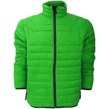 Textiel Heren Dons gevoerde jassen Stormtech Altitude Boomkruin Groen/Zwart
