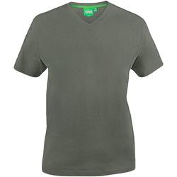 Textiel Heren T-shirts korte mouwen Duke Signature Khaki