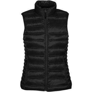 Textiel Dames Dons gevoerde jassen Stormtech Quilted Zwart