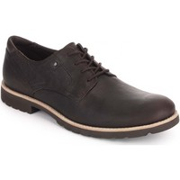 Schoenen Heren Derby Rockport Ledge Hill Chocolade