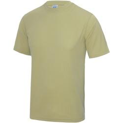 Textiel Heren T-shirts korte mouwen Awdis Performance Woestijnzand