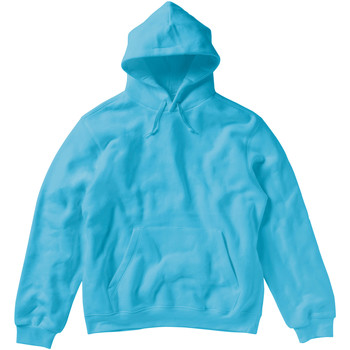 Textiel Dames Sweaters / Sweatshirts Sg Hooded Turquoise