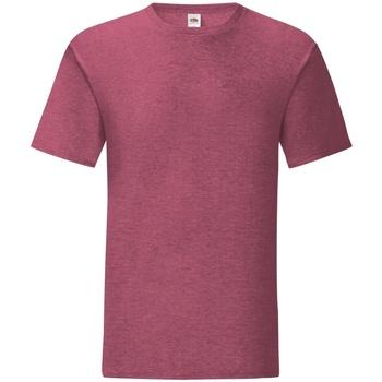Textiel Heren T-shirts korte mouwen Fruit Of The Loom Iconic Heather Bordeaux