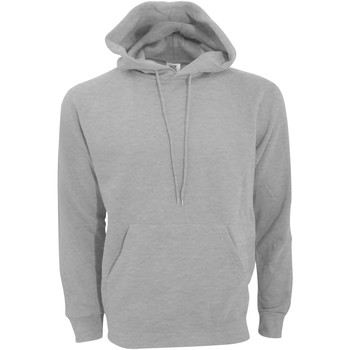Textiel Heren Sweaters / Sweatshirts Sg Hooded Licht Oxford