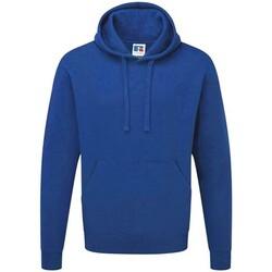 Textiel Heren Sweaters / Sweatshirts Russell 575M Helder Koninklijk